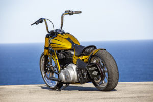Harley Davidson Softail Slim Bobber 086 Kopie