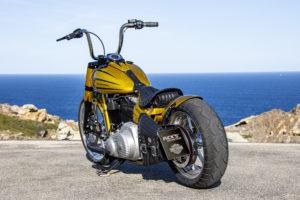 Harley Davidson Softail Slim Bobber 091 Kopie