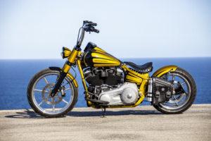 Harley Davidson Softail Slim Bobber 100