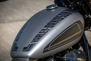 Harley Davidson Street Bob 300 Custom Ricks 039