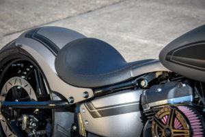Harley Davidson Street Bob 300 Custom Ricks 101