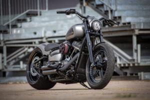 Harley Davidson Street Bob 300 Custom Ricks 103