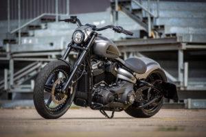 Harley Davidson Street Bob 300 Custom Ricks 105