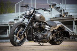 Harley Davidson Street Bob 300 Custom Ricks 107