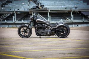 Harley Davidson Street Bob 300 Custom Ricks 109