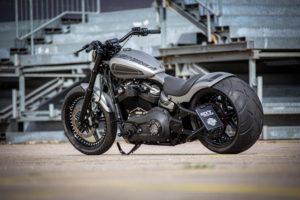 Harley Davidson Street Bob 300 Custom Ricks 111