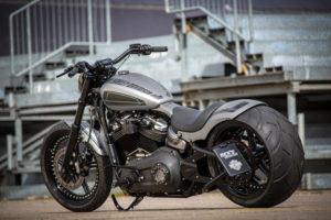 Harley Davidson Street Bob 300 Custom Ricks 112