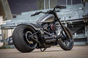 Harley Davidson Street Bob 300 Custom Ricks 116