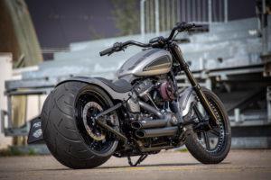 Harley Davidson Street Bob 300 Custom Ricks 117