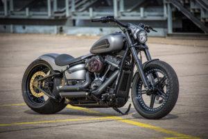 Harley Davidson Street Bob 300 Custom Ricks 119