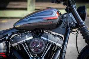 Harley Davidson Street Bob Custom Ricks 005