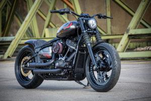 Harley Davidson Street Bob Custom Ricks 009