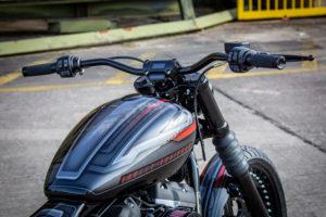 Harley Davidson Street Bob Custom Ricks 029