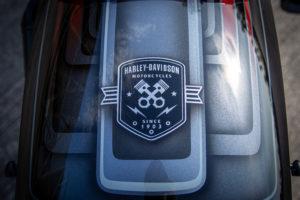 Harley Davidson Street Bob Custom Ricks 030