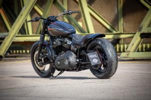 Harley Davidson Street Bob Custom Ricks 042