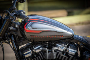 Harley Davidson Street Bob Custom Ricks 048