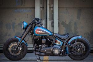 Harley Davidson Twin Cam Softail Slim Bobber lang 032