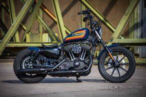 Harley Davidson Sportster Iron Ricks 019