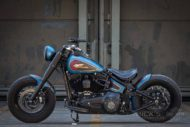 Harley Davidson Twin Cam Softail Slim Bobber kurz 042