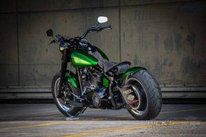 Harley DAvidson TwinCam Softail Slim Bobber 019