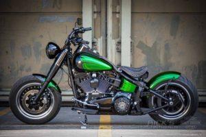 Harley DAvidson TwinCam Softail Slim Bobber 026