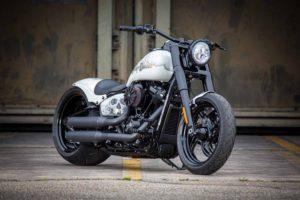 Harley Davidson Slim Milwaukee Eight 300 Ricks 001
