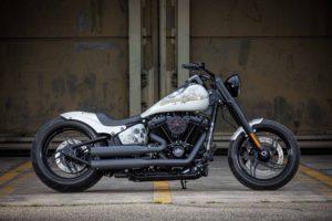 Harley Davidson Slim Milwaukee Eight 300 Ricks 010