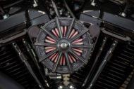 Harley Davidson Slim Milwaukee Eight 300 Ricks 014