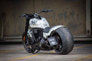 Harley Davidson Slim Milwaukee Eight 300 Ricks 038