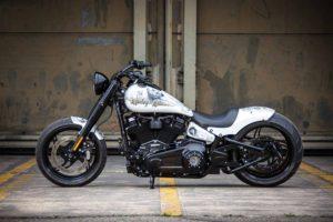 Harley Davidson Slim Milwaukee Eight 300 Ricks 049