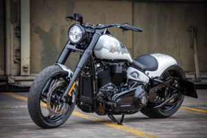 Harley Davidson Slim Milwaukee Eight 300 Ricks 058