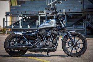 Harley Davidson Sportster Bobber Ricks 014