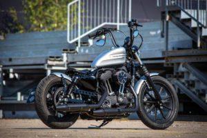 Harley Davidson Sportster Bobber Ricks 029