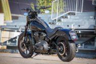 Harley Davidson Lowrider S Milwaukee Eight Sons of Anachie Ricks 034