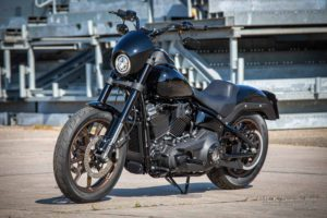 Harley Davidson Lowrider S Milwaukee Eight Sons of Anachie Ricks 044