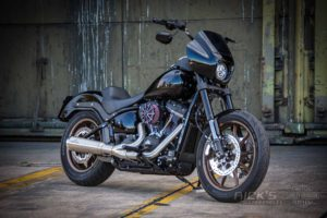 Harley Davidson Lowrider S Clubstyle Ricks 084