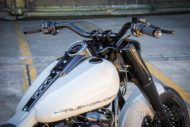 Harley Davidson fat Boy Ricks 027