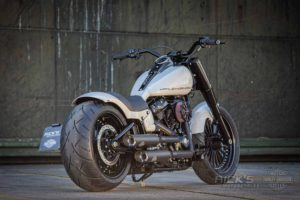 Harley Davidson fat Boy Ricks 042