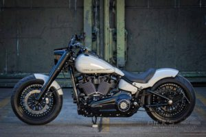 Harley Davidson fat Boy Ricks 061