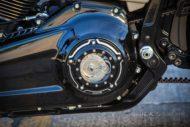 Harley Davidson fat Boy Ricks 064