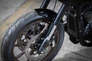 Harley davidson Lowrider S Clubstyle FXRP Ricks 003 Kopie