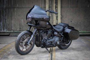 Harley davidson Lowrider S Clubstyle FXRP Ricks 008 Kopie