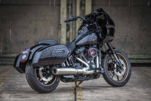 Harley davidson Lowrider S Clubstyle FXRP Ricks 054 Kopie