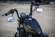 Harley Davidson Sportster Bobber Ricks 032