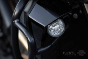 HD PanAmerica Details 065