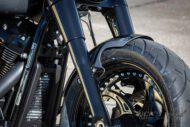 Harley Davidson Softail Fat Boy Custom 005