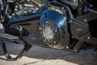 Harley Davidson Softail Fat Boy Custom 050
