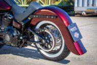 Harley Davidson Softail heritage Chicano Coustom 053