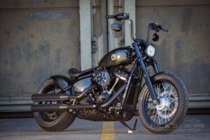 Harley Davidson Softail Standart Bobber Ricks 001