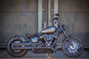 Harley Davidson Softail Standart Bobber Ricks 015